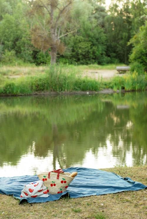 pique-nique-au-bord-de-l'eau