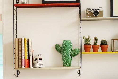 vase-cactus