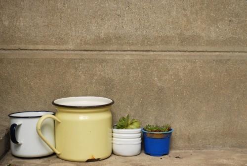 pots-émaillés-et-succulentes