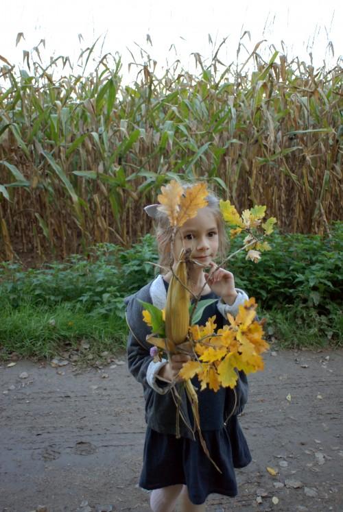 bouquet-d'automne