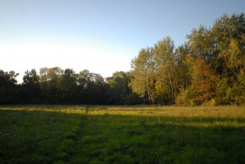 paysages-d'automne