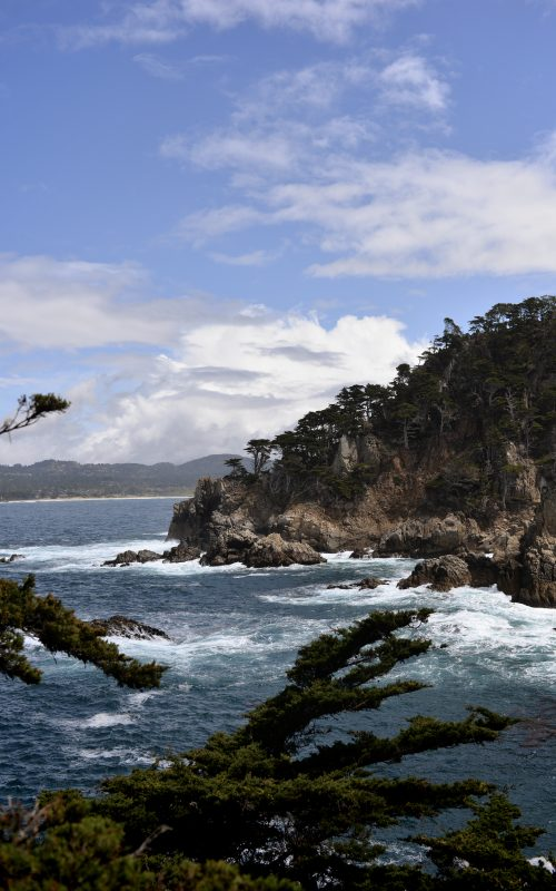 Notre road trip en Californie, Monterey/Big sur/ Point Lobos