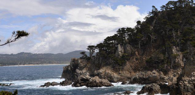 Notre voyage en Californie, Monterey, Big sur en passant pas Point Lobos